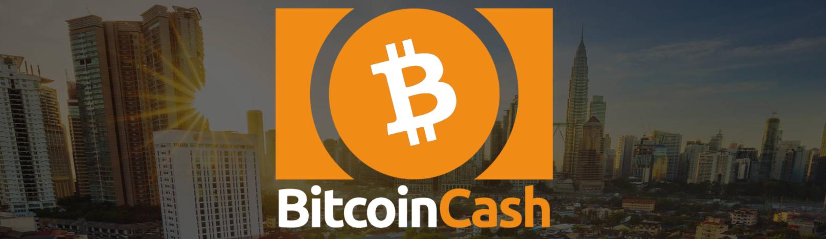 【時価総額3位】ビットコインキャッシュ(BCH・Bitcoin cash)約2兆3370億円